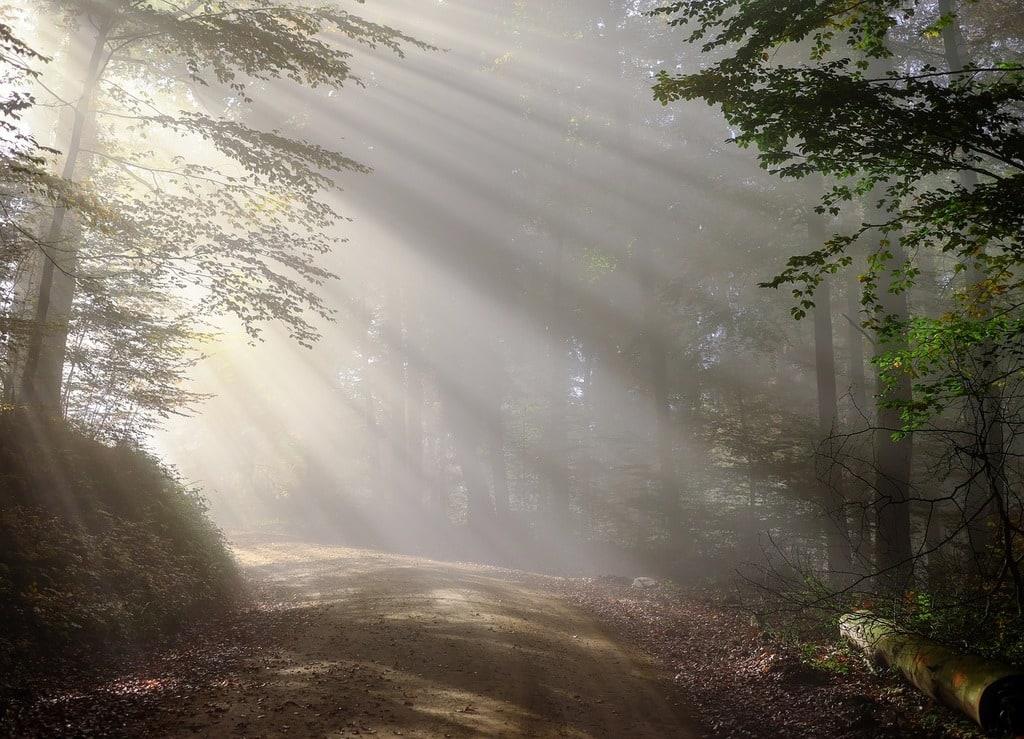 Top 10 destinations pour un week-end nature